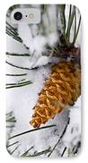 Snowy Pine Cone IPhone Case by Elena Elisseeva