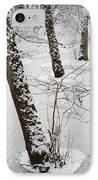Snowy Trees In Frozen Pond - Winter Forest IPhone Case by Matthias Hauser