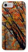 Song Of Autumn IPhone Case