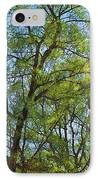 Spring Leaves In The Willows IPhone Case
