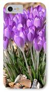 Springflowers IPhone Case
