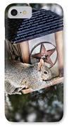 Squirrel On Bird Feeder IPhone Case by Elena Elisseeva