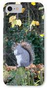 Squirrel Perched IPhone Case