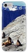 Stellar Sea Lions IPhone Case by Thomas R Fletcher