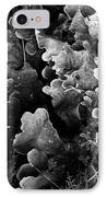 Study In Black And White 1 IPhone Case by Steve Patton