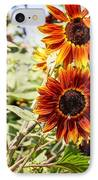 Sunflower Cluster IPhone Case
