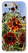 Sunflower Layers IPhone Case by Kerri Mortenson