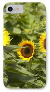 Sunflower Patch IPhone Case by Bill Cannon