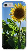 Sunflower With Sun IPhone Case by Donna Doherty