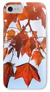 Sunlight On Red Leaves IPhone Case