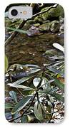 Sunlit Mountain Laurel IPhone Case by JW Hanley