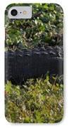 Sunny Alligator IPhone Case by Joshua House