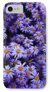Sweet Dreams Of Purple Daisies IPhone Case
