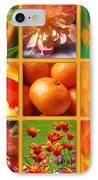 Tangerine Dream Window IPhone Case by Joan-Violet Stretch