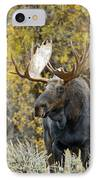 Teton Bull Moose IPhone Case by Gary Langley