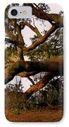 The Old Tree At The Ashley River In Charleston IPhone Case by Susanne Van Hulst