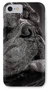 The Other Dog Next Door IPhone Case by Bob Orsillo
