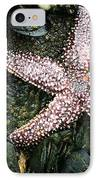 The Starfish  IPhone Case by JC Findley