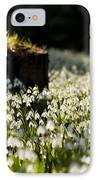 The Stump And The Snowdrops IPhone Case by Anne Gilbert
