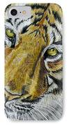Tiger Painting IPhone Case