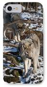 Timber Wolf Pictures 957 IPhone Case by World Wildlife Photography