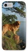 Toby On Point  IPhone Case by Sandra Updyke