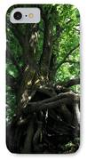 Tree On Pierce Stocking Scenic Drive IPhone Case by Michelle Calkins