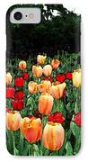 Tulip Festival  IPhone Case by Zinvolle Art