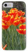Tulips From Brooklyn IPhone Case