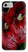 Two Orchids IPhone Case by Elizabeth Winter