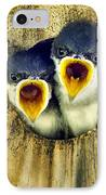 Two Tree Swallow Chicks IPhone Case