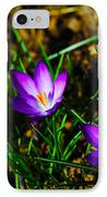 Vibrant Crocuses IPhone Case by Karol Livote