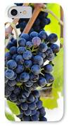 Vineyard Grapes IPhone Case