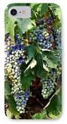 Waiting For Wine IPhone Case by Carol Groenen