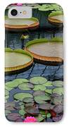 Waterlilies And Platters 2 IPhone Case by Byron Varvarigos
