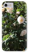 White Camellias IPhone Case by Carol Groenen