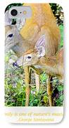 Whitetailed Deer Doe And Fawn IPhone Case