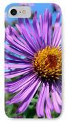 Wild Purple Aster IPhone Case