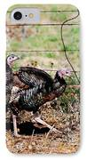 Wild Turkeys IPhone Case by Thea Wolff
