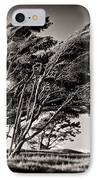 Windswept IPhone Case by Dave Bowman
