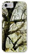 Winter Tree At The  Lake Shore  IPhone Case by Ann Powell