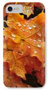You Waited For Me To Fall IPhone Case by Catherine Reusch Daley