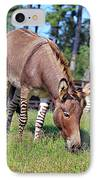 Zedonk Or Zebroid IPhone Case
