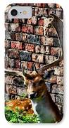 Against The Wall IPhone Case