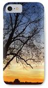 Bare Tree At Sunset IPhone Case