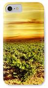 Bright Sunset At Vineyard IPhone Case by Anna Om