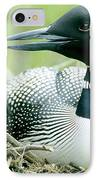 Common Loon, La Mauricie National Park IPhone Case