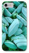 Diatoms, Sem IPhone Case