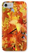 Fall Colors IPhone Case by Carlos Caetano