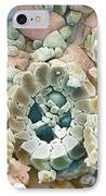 Fossil Debris In Chalk, Sem IPhone Case by Steve Gschmeissner